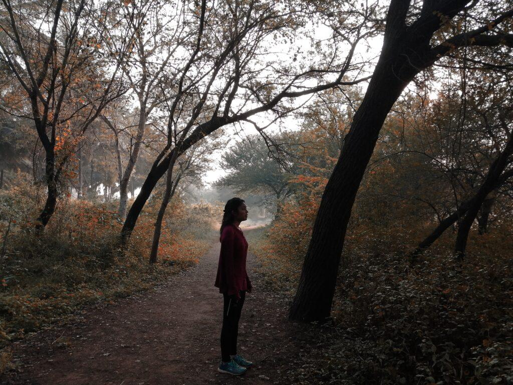 Immergersi nel bosco
